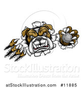 Vector Illustration of a Vicious Tough Bulldog Monster Shredding Through a Wall with a Golf Ball in One Hand by AtStockIllustration