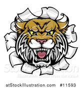 Vector Illustration of a Vicious Wildcat Mascot Head Breaking Through a Wall by AtStockIllustration