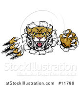 Vector Illustration of a Vicious Wildcat Mascot Shredding Through a Wall by AtStockIllustration