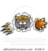 Vector Illustration of a Vicious Wildcat Mascot Shredding Through a Wall with a Basketball by AtStockIllustration