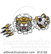 Vector Illustration of a Vicious Wildcat Mascot Shredding Through a Wall with a Soccer Ball by AtStockIllustration
