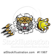 Vector Illustration of a Vicious Wildcat Mascot Shredding Through a Wall with a Tennis Ball by AtStockIllustration