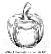 Vector Illustration of a Vintage Woodcut Styled Bell Pepper in Black and White by AtStockIllustration