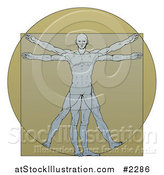 Vector Illustration of a Vitruvian Man over Tan by AtStockIllustration