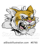 Vector Illustration of a Wild Cat Breaking Through a Wall by AtStockIllustration