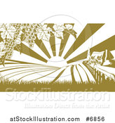 Vector Illustration of a Winery Farm House and Rolling Hills with Vineyard Grape Vines and Sun Rays in Green and White by AtStockIllustration