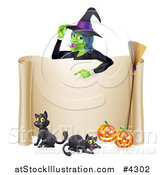Vector Illustration of a Witch Pointing down to a Scroll Sign with Black Cats Halloween Pumpkins and a Broomstick by AtStockIllustration