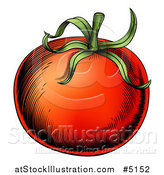 Vector Illustration of a Woodblock Tomato by AtStockIllustration