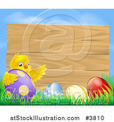 Vector Illustration of a Wooden Sign with a Chick and Easter Eggs Against Blue Sky by AtStockIllustration