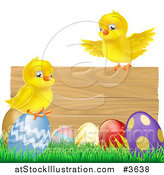 Vector Illustration of a Yellow Chicks and Easter Eggs on Grass by a Wood Sign by AtStockIllustration