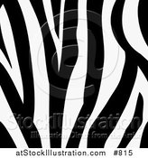 Vector Illustration of a Zebra Animal Print Background with a Black and White Stripes Pattern by AtStockIllustration