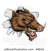 Vector Illustration of an Aggressive Boar Mascot Breaking Through a Wall by AtStockIllustration