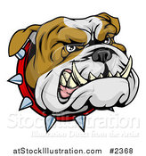 Vector Illustration of an Aggressive Bulldog Face with a Spiked Collar by AtStockIllustration