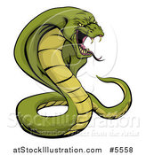 Vector Illustration of an Aggressive Green Cobra Snake Ready to Strike by AtStockIllustration