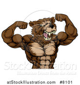 Vector Illustration of an Angry Buff Muscular Grizzly Bear Man Flexing His Muscles, from the Waist up by AtStockIllustration