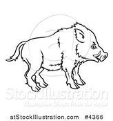 Vector Illustration of an Outlined Chinese Zodiac Boar in Profile by AtStockIllustration