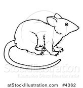 Vector Illustration of an Outlined Chinese Zodiac Rat by AtStockIllustration