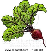 Vector Illustration of Beet Beetroot Vegetable Woodcut Illustration by AtStockIllustration