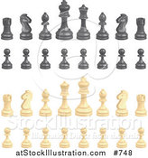 Vector Illustration of Black and Ivory Chess Pieces by AtStockIllustration