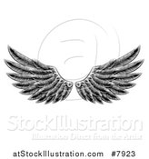 Vector Illustration of Black and White Engraved Woodcut Feathered Wings by AtStockIllustration
