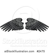 Vector Illustration of Black and White Feathered Wings by AtStockIllustration