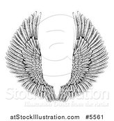 Vector Illustration of Black and White Spread Feathered Angel Wings by AtStockIllustration