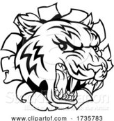 Vector Illustration of Black and White Tiger Mascot Head Breaking Through a Wall by AtStockIllustration