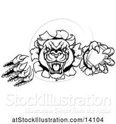 Vector Illustration of Black and White Vicious Roaring Panther Mascot Shredding Through a Wall with an American Football by AtStockIllustration