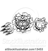 Vector Illustration of Black and White Vicious Tiger Mascot Slashing Through a Wall with a Basketball by AtStockIllustration