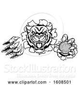 Vector Illustration of Black and White Vicious Tiger Mascot Slashing Through a Wall with a Golf Ball by AtStockIllustration