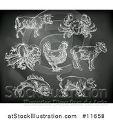 Vector Illustration of Black Board with Chalk Drawn Foods and Meat Animals by AtStockIllustration