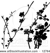Vector Illustration of Black Silhouetted Blossom Branches by AtStockIllustration