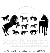 Vector Illustration of Black Silhouetted Horses by AtStockIllustration