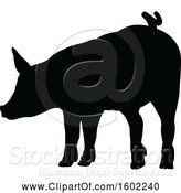 Vector Illustration of Black Silhouetted Pig by AtStockIllustration