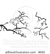 Vector Illustration of Blossoms on Branches Designs by AtStockIllustration