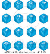 Vector Illustration of Blue Cube Icons: Searches, View Finders, Www, Magnifying Glasses, Dogs, Flashlight, and Spider by AtStockIllustration