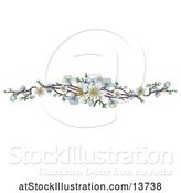 Vector Illustration of Border of White Spring Blossoms by AtStockIllustration