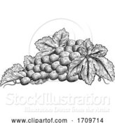 Vector Illustration of Bunch of Grapes on Vine with Leaves by AtStockIllustration