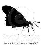 Vector Illustration of Butterfly Insect Animal Silhouette by AtStockIllustration