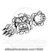 Vector Illustration of Cartoon Black and White Bulldog Monster Shredding Through a Wall with a Cricket Ball in One Hand by AtStockIllustration