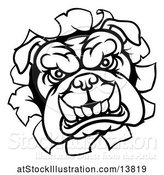 Vector Illustration of Cartoon Black and White Mad Bulldog Breaking Through a Wall by AtStockIllustration
