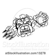 Vector Illustration of Cartoon Black and White Tough Bulldog Monster Sports Mascot Holding out a Tennis Ball in One Clawed Paw and Breaking Through a Wall by AtStockIllustration