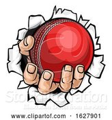 Vector Illustration of Cartoon Cricket Ball Hand Tearing Background by AtStockIllustration