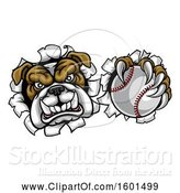 Vector Illustration of Cartoon Tough Bulldog Monster Sports Mascot Holding out a Baseball in One Clawed Paw and Breaking Through a Wall by AtStockIllustration