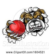 Vector Illustration of Cartoon Tough Bulldog Monster Sports Mascot Holding out a Cricket Ball in One Clawed Paw and Breaking Through a Wall by AtStockIllustration