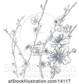 Vector Illustration of Cherry Blossom Branches Background by AtStockIllustration