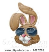 Vector Illustration of Cool Easter Bunny Rabbit in Sunglasses by AtStockIllustration