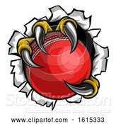 Vector Illustration of Cricket Ball Eagle Claw Talons Tearing Background by AtStockIllustration