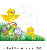 Vector Illustration of Cute Easter Chicks with a Basket and Eggs in Grass by AtStockIllustration