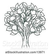 Vector Illustration of Dark Green Apple Tree by AtStockIllustration